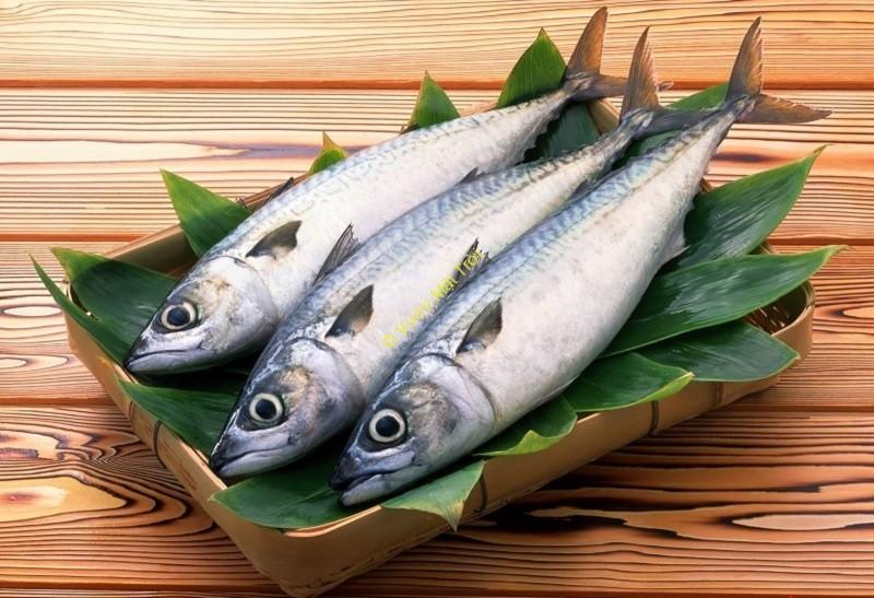 Cá biển tươi nên chọn những con da màu bạc óng ánh, mắt còn trong