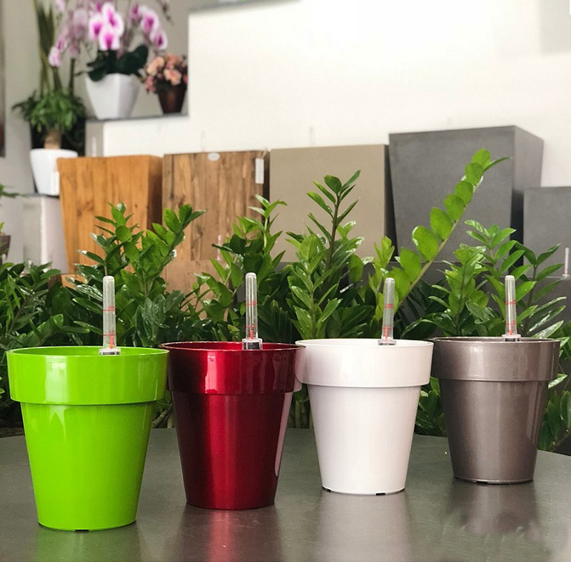 Chậu trồng hoa nhựa giá rẻ, đa dạng về màu sắc