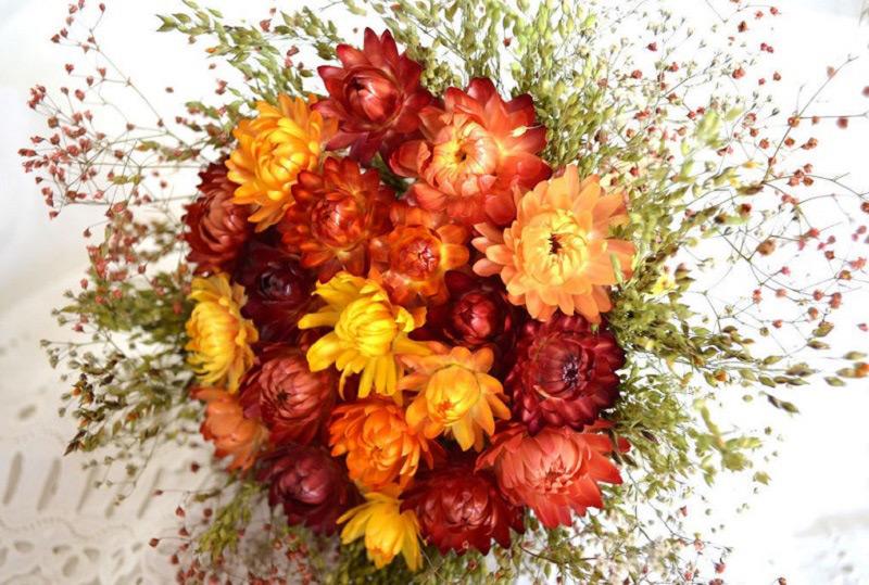 Hoa bất tử tượng trưng cho tình yêu bất diệt, vĩnh hằng