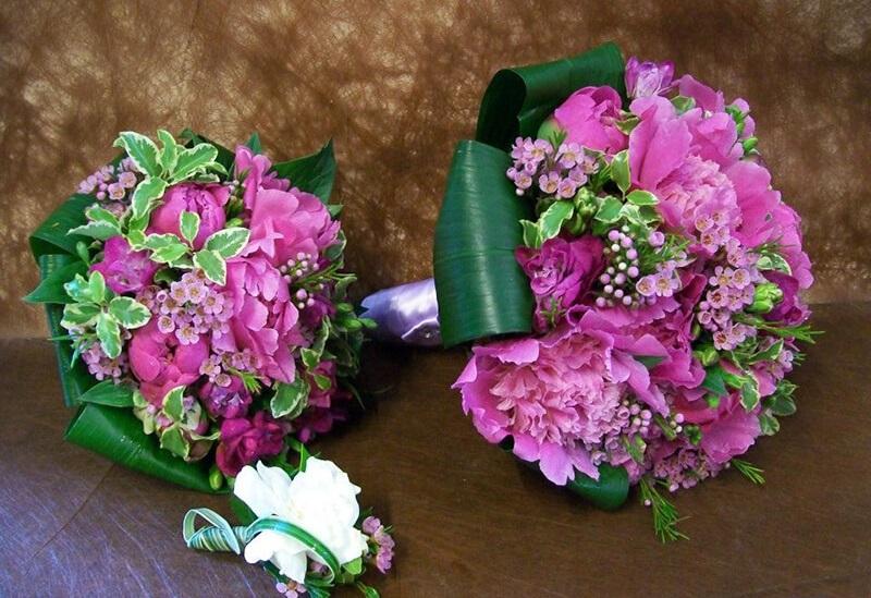 Hoa cẩm chướng thể hiện tình yêu đam mê, và hạnh phúc dài lâu
