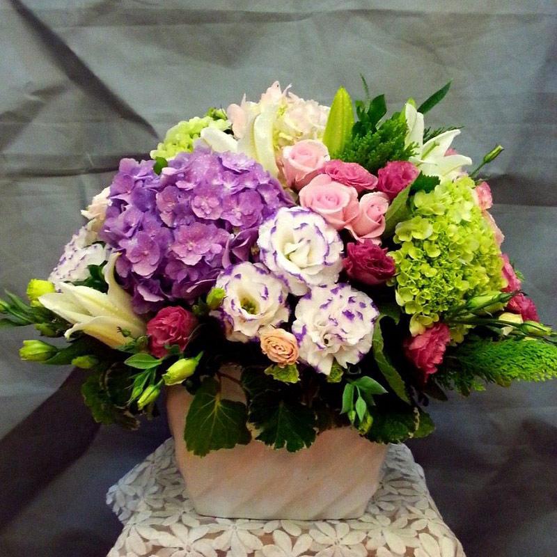 Hoa cẩm tú cầu biểu tượng của sự thịnh vượng và tài lộc