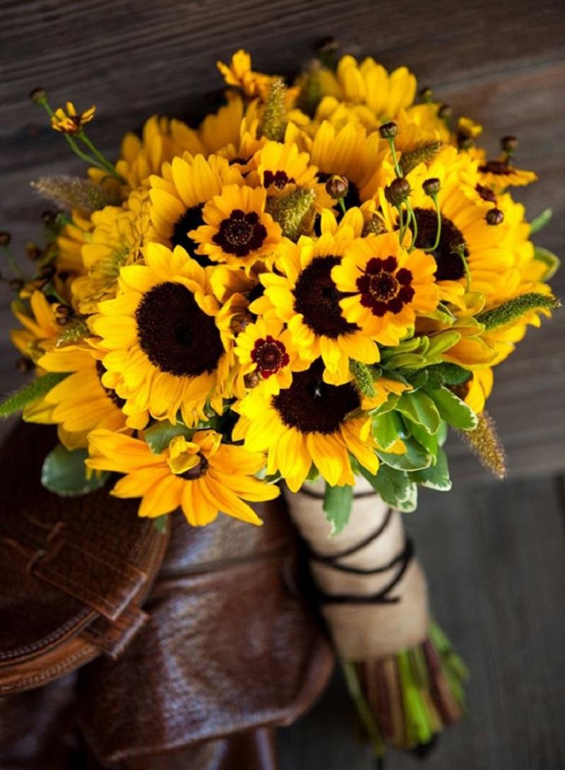 Hoa hướng dương tượng trưng cho một tình yêu đẹp, thủy chung