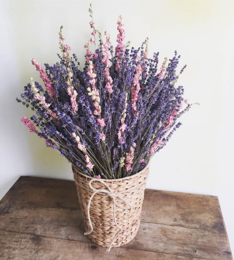 Hoa oải hương thể hiện tình yêu thủy chung, lãng mạn