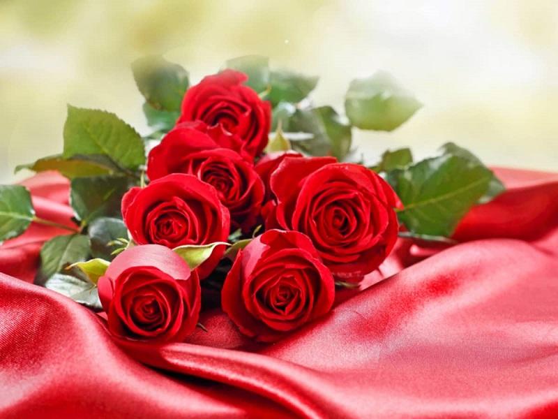 Hoa tình yêu là món quà tinh thần vô giá để gửi tặng cho nửa kia của mình