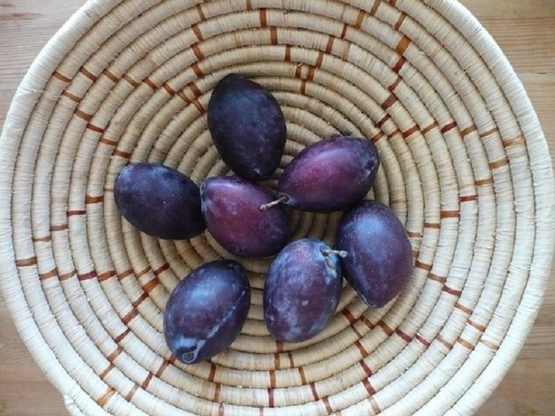Loại trái cây rất tốt