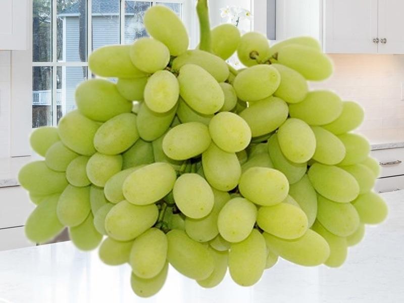 Nho xanh không hạt Mỹ là loại trái cây được rất nhiều khách hàng tìm kiếm