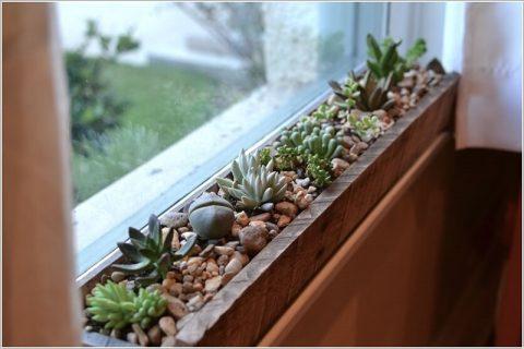 Sen đá trang trí cửa sổ tượng trưng cho sự kiên cường, bền bỉ