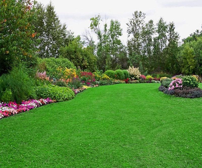 Trang trí cho sân vườn
