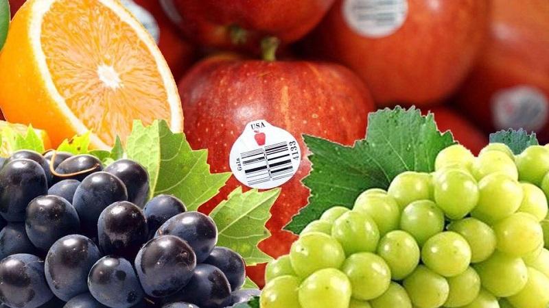 Vườn Mặt trời là địa chỉ cung cấp các loại hoa quả sạch nhập khẩu chất lượng tốt nhất