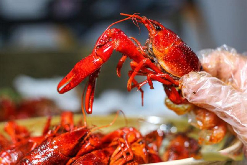 Liên hệ cửa hàng Vườn Mặt Trời để mua hải sản uy tín, chất lượng