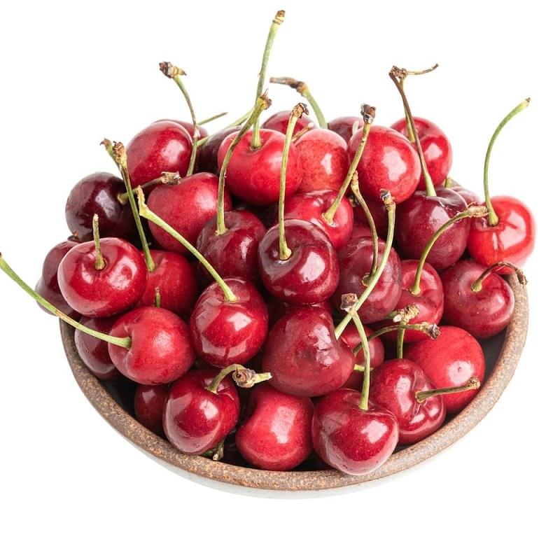 Loại trái cây khá kén đất trồng nên cần chăm sóc kỹ lưỡng