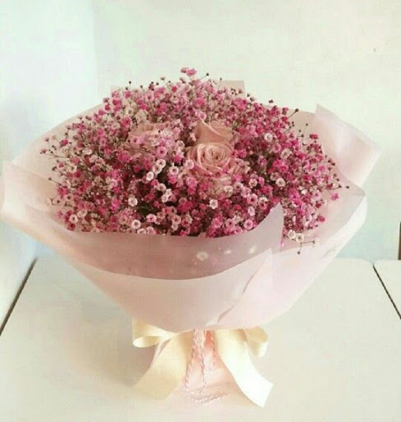 Bó hoa bi tươi
