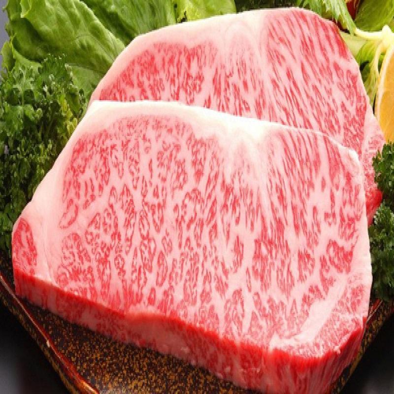 Hàm lượng protein phong phú
