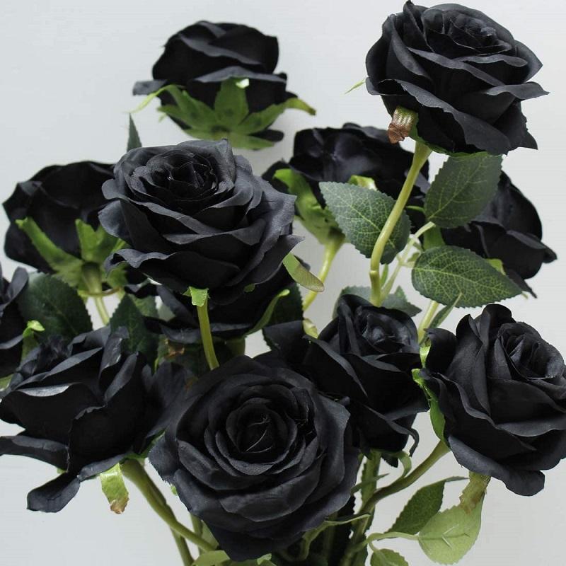 Bông hồng đen từng đứng trước nguy cơ bị tuyệt chủng