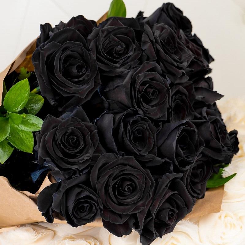 Giá bông hồng đen không hề rẻ nhưng chất lượng đảm bảo