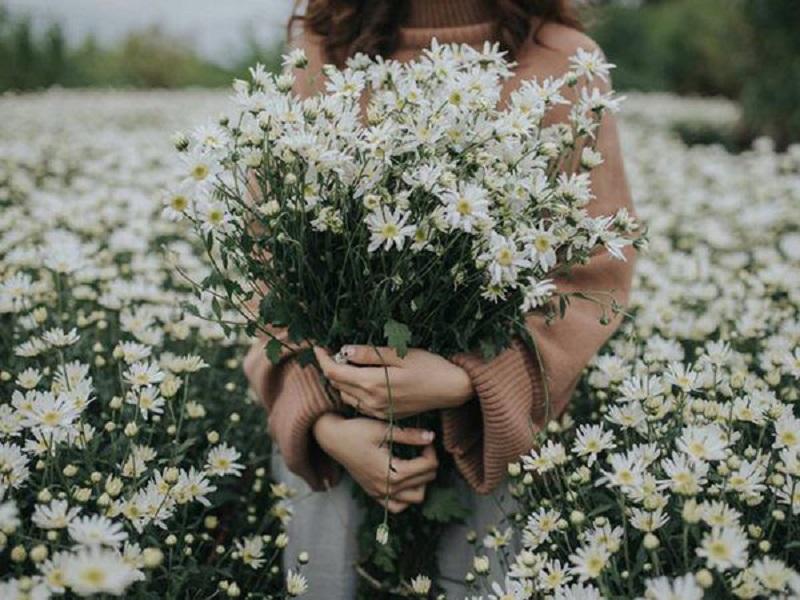 Hoa tươi tặng vào các dịp kỷ niệm ngày đặc biệt