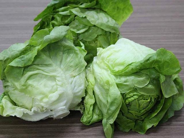 Hạt giống xà lách mỡ được trồng phổ biến ở Việt Nam