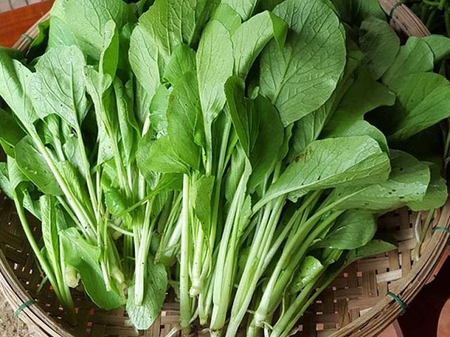 Rau cải ngọt có nhiều tác dụng tốt với sức khỏe