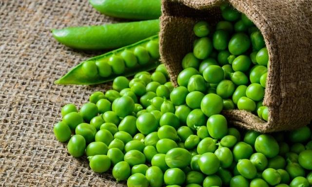 Báo giá hạt giống đậu Hà Lan