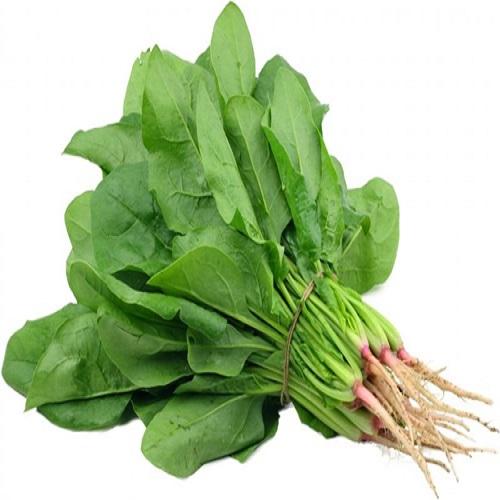 hạt rau cải bó xôi