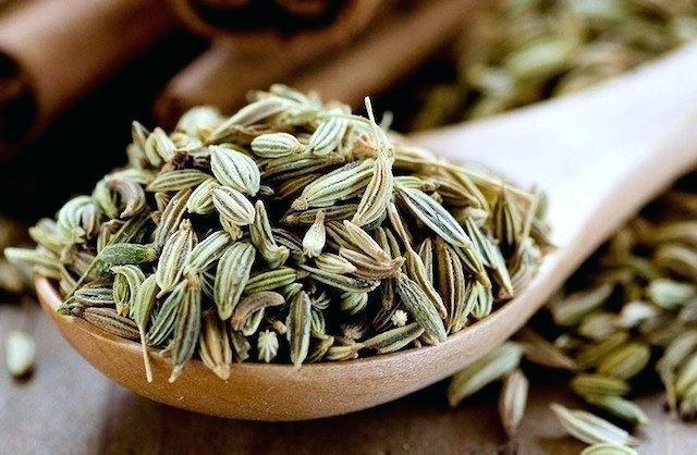 Kiểm tra chất lượng hạt giống hương thảo